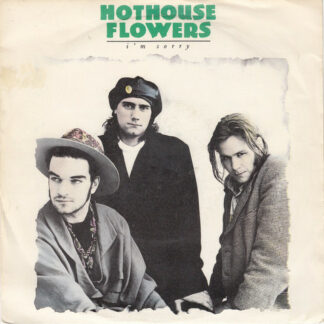 Hothouse Flowers - I'm Sorry (7